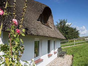 ferienhaus-nordsee-insel-pellworm